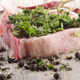 pork chop with pepper and parsley - PhotoDune Item for Sale