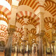 Cordoba mosque cathedral - PhotoDune Item for Sale