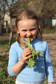 little beautiful girl chewing young sprout of a rhubard - PhotoDune Item for Sale