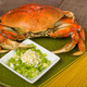 Dungeness crab and ingredients for pasta - PhotoDune Item for Sale
