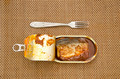 open canned fish metal can and fork - PhotoDune Item for Sale