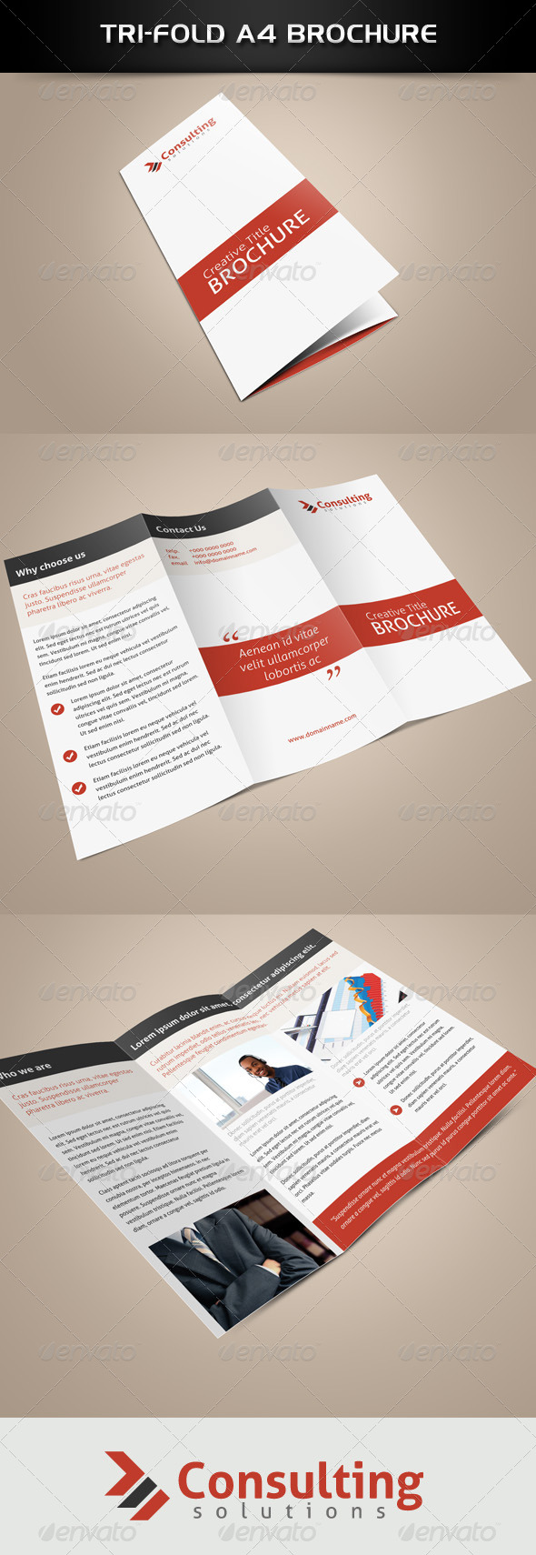 GraphicRiver Tri-Fold Consultation Brochure 4758328