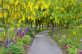 Spring garden path - PhotoDune Item for Sale