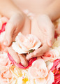 woman's hands holding rose - PhotoDune Item for Sale