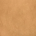 Golden color leather - PhotoDune Item for Sale