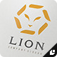 Lion Company Logo - GraphicRiver Item for Sale