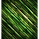 Background with Bamboo - GraphicRiver Item for Sale
