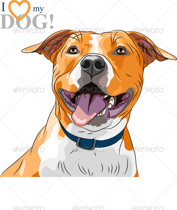Vector Dog American Staffordshire Terrier - Animals Characters