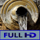 Running Water Fountain - VideoHive Item for Sale