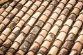 Roof tile with leaves and water in rows. - PhotoDune Item for Sale