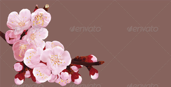 GraphicRiver Sakura 4782725
