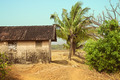 Rural old house against the jungle - PhotoDune Item for Sale