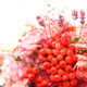 rowan berries as wedding flower - PhotoDune Item for Sale