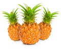 Fresh pineapple on white background - PhotoDune Item for Sale