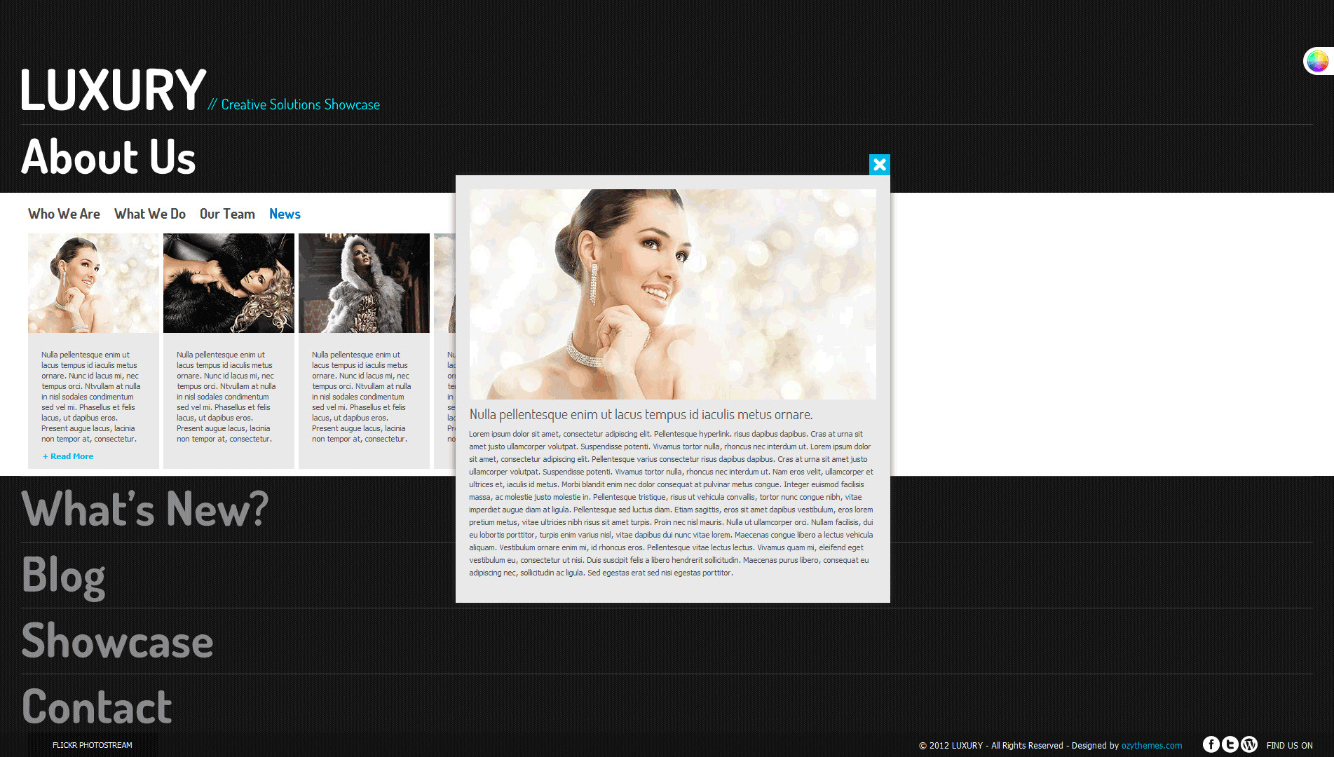 Luxury Stylish Accordion Wordpress Theme - News page one of the boxes selected and detail window opened