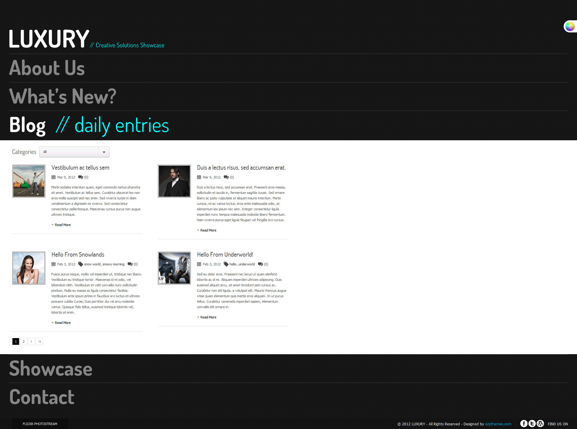 Luxury Stylish Accordion Wordpress Theme - Blog main page, powered by ajax. Included paging function.