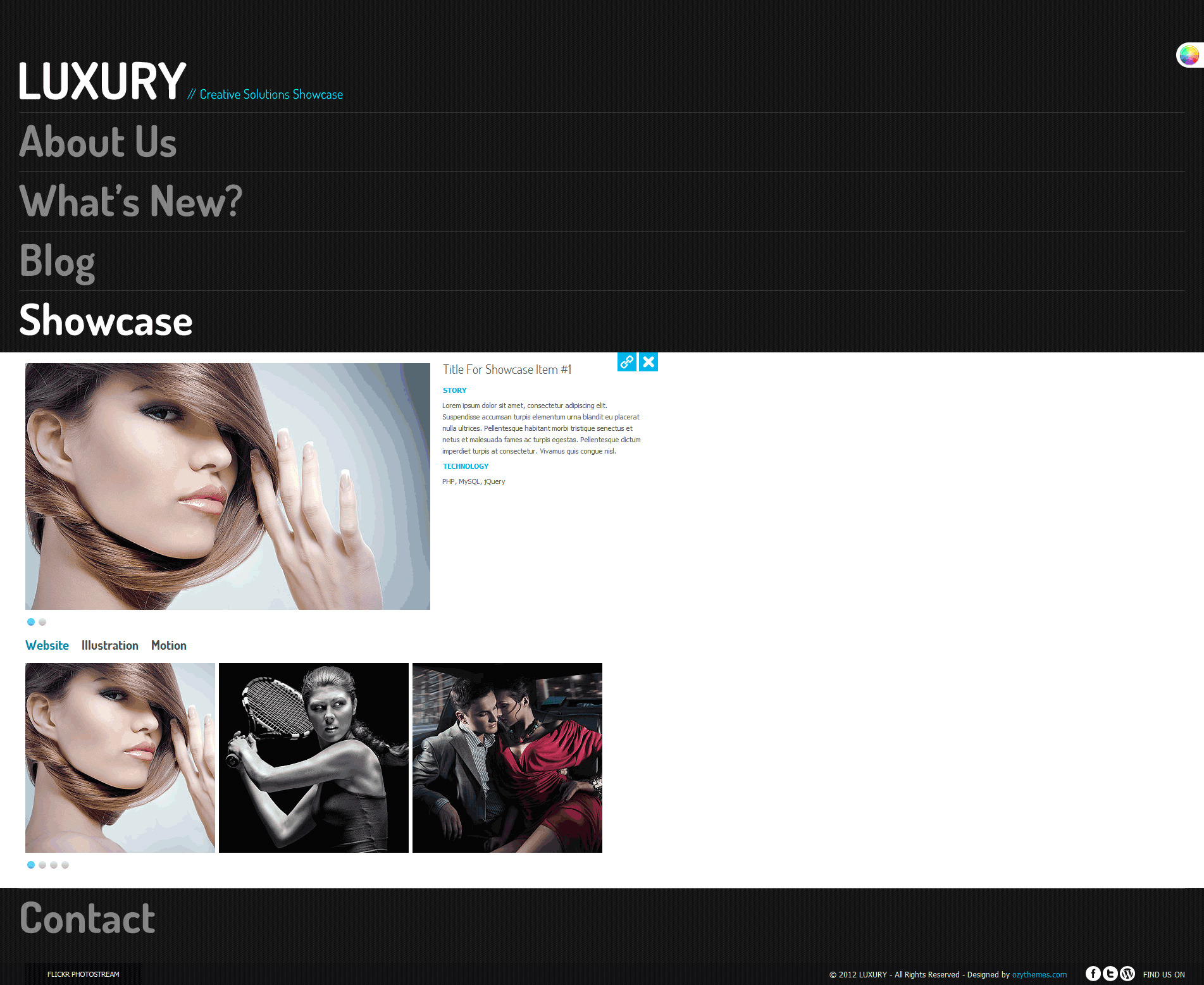 Luxury Stylish Accordion Wordpress Theme - selected showcase item detail page.