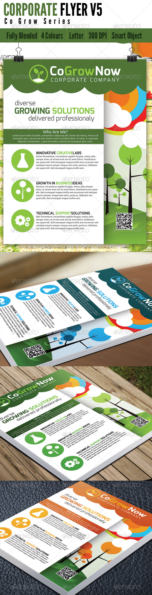 Corporate Flyer V5 - Corporate Flyers