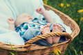 Little boy lying in wicker baske - PhotoDune Item for Sale