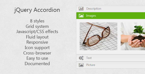 CodeCanyon jQuery Accordion 4826492