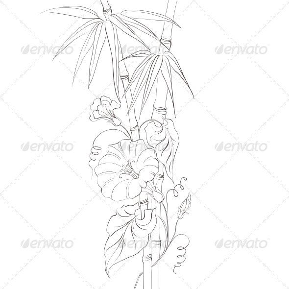 GraphicRiver Bindweed Flower and Bamboo 4827743