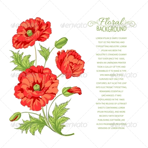 GraphicRiver Red Poppy Card 4827920