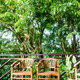 Chairs in a jungle resort - PhotoDune Item for Sale