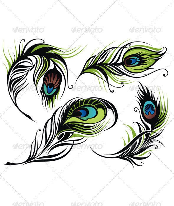 GraphicRiver Peacock Feathers 4836515