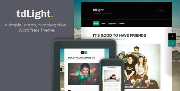 tdLight - WordPress Blog Theme