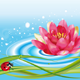 Water Lily and Ladybug - GraphicRiver Item for Sale