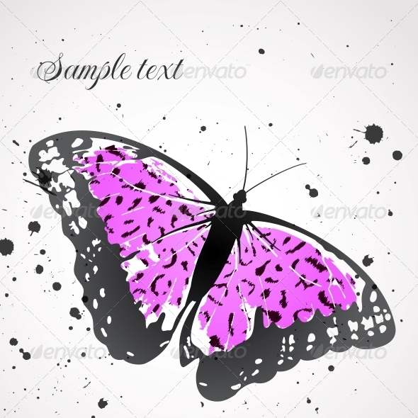 GraphicRiver Vector Background with Leopard Butterfly 4854744