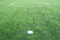 soccer field grass - PhotoDune Item for Sale