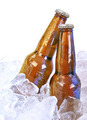 Two Alcohol Brown Glass Beer Bottles on White - PhotoDune Item for Sale