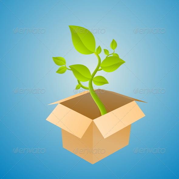 GraphicRiver Plant Box 4879675