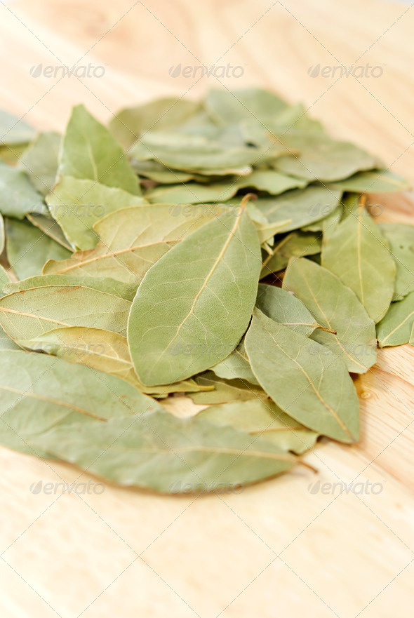 Bay Leaves - Stock Photo - Images