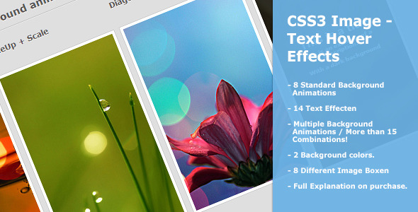 CodeCanyon CSS3 Image Text Hover Effects 4884787