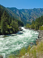 A River Flowing Through a Mountain Forest - Wenatchee River Washington USA - PhotoDune Item for Sale