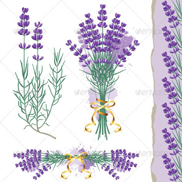GraphicRiver Lavender 4891943