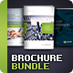 Business Brochure Bundle Vol. 4-6-7 - GraphicRiver Item for Sale