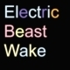 Transformer Wakes