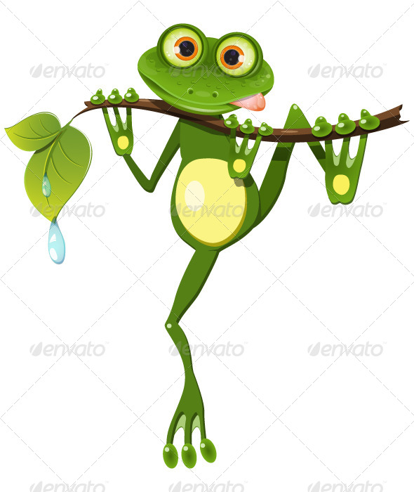 GraphicRiver Frog on a Branch 4910129
