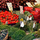 Organic vegetables market stall - PhotoDune Item for Sale