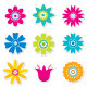 Colorful Flowers Set - GraphicRiver Item for Sale