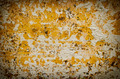 Vintage grunge wall texture. - PhotoDune Item for Sale