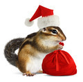 Chipmunk in red Santa Claus hat with Santas bag - PhotoDune Item for Sale