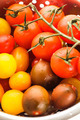 Various types of cherry tomatoes - PhotoDune Item for Sale