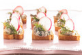 canapes  with radish - PhotoDune Item for Sale