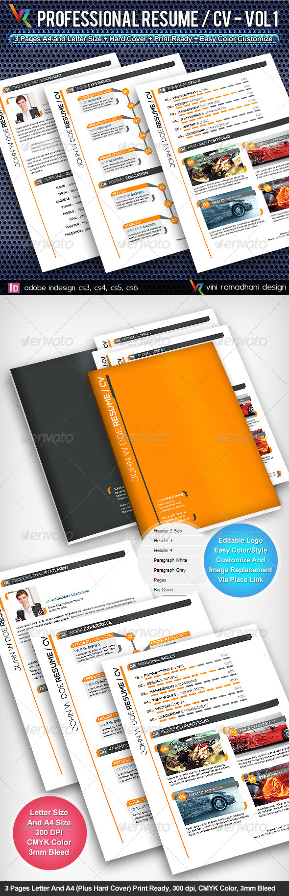 GraphicRiver Professional Resume 4939208