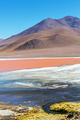 Laguna Colorada - PhotoDune Item for Sale