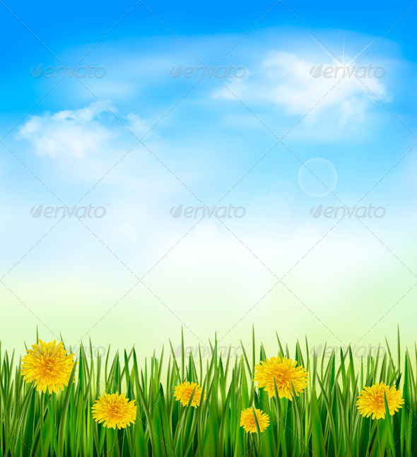GraphicRiver Nature Background with Green Grass and Flowers 4954415